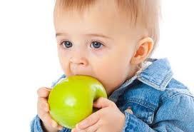 Mela: frutto della salute